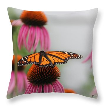 Resting Monarch Throw Pillow