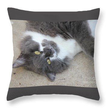 Resting Ms Mustache Throw Pillow