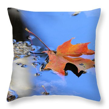 Throw Pillow featuring the photograph Resting On Gold And Blue by Doris Potter