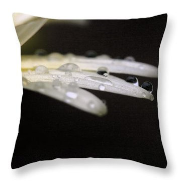 Throw Pillow featuring the photograph Resting On The Edge by Angela Rath