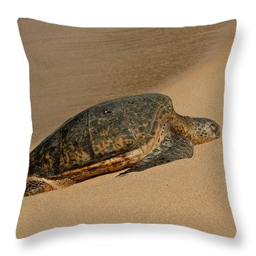 Throw Pillow featuring the photograph Resting by Roger Mullenhour