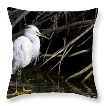 Resting Snowy Throw Pillow
