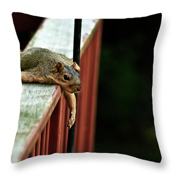 Resting Squirrel Throw Pillow
