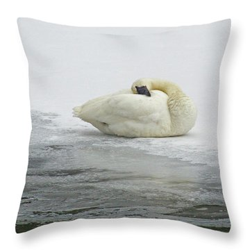 Resting Swan-signed-#1314 Throw Pillow by J L Woody Wooden