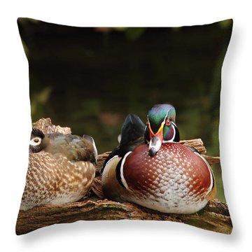 Resting Wood Ducks Throw Pillow