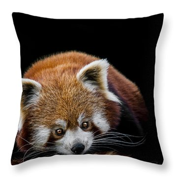 Restless Throw Pillow