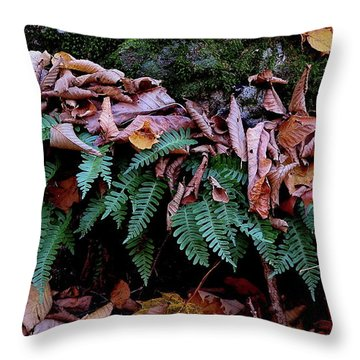 Resurrection Fern Along The Appalachian Trail Throw Pillow