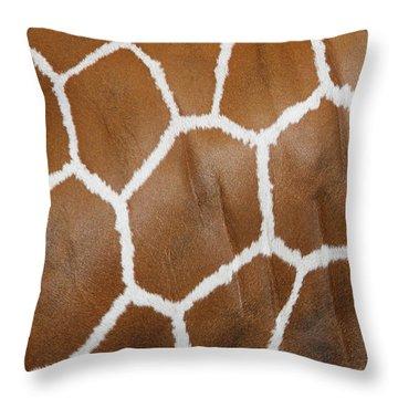 Reticulated Giraffe #2 Throw Pillow