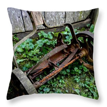 Retired Throw Pillow by Renate Nadi Wesley