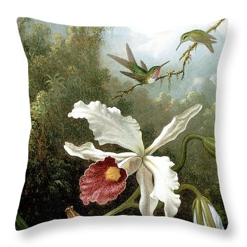 Retouched Masters - Orchid And Hummingbirds In Tropical Forest Throw Pillow