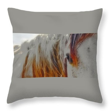 Retro Sunlight And Grey Throw Pillow