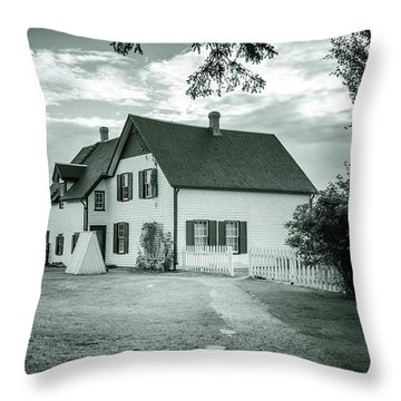 Throw Pillow featuring the photograph Returning From Lovers Lane by Chris Bordeleau