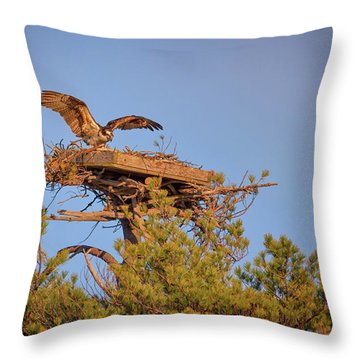 Returning To The Nest Throw Pillow