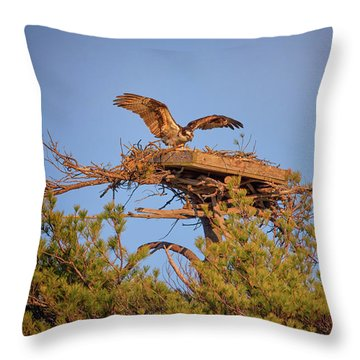 Returning To The Nest Throw Pillow by Rick Berk