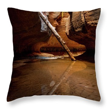 Throw Pillow featuring the photograph Reunion by Dustin LeFevre