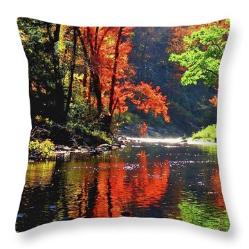 Revealed Throw Pillow by Sheila Ping
