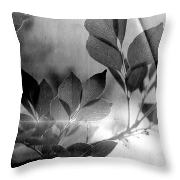 Revel Throw Pillow