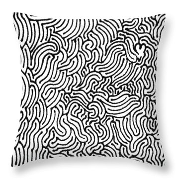 Revelation Throw Pillow by Steven Natanson