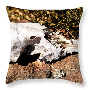 Reversal Of Fortune Throw Pillow
