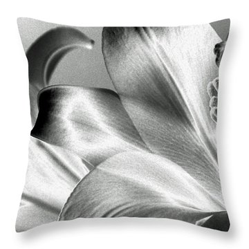 Throw Pillow featuring the photograph Reverse by Steven Huszar