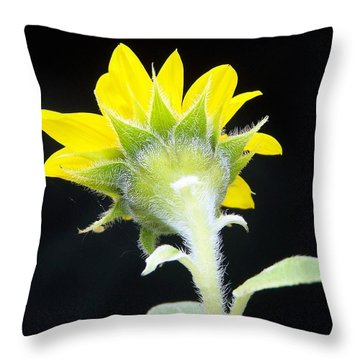 Reverse Sunflower Throw Pillow