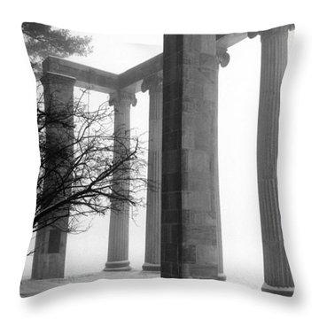 Revolutionary Reflections Throw Pillow