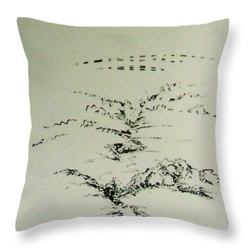 Rfb0209-2 Throw Pillow