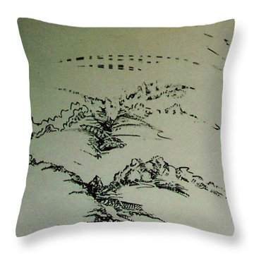 Rfb0209 Throw Pillow