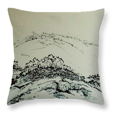 Rfb0211 Throw Pillow