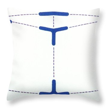 Throw Pillow featuring the drawing Rfb1010 by Robert F Battles