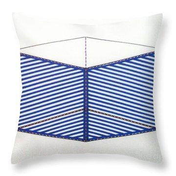 Throw Pillow featuring the drawing Rfb1012 by Robert F Battles