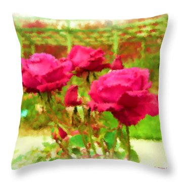 r.'Forgotten Dreams' Throw Pillow