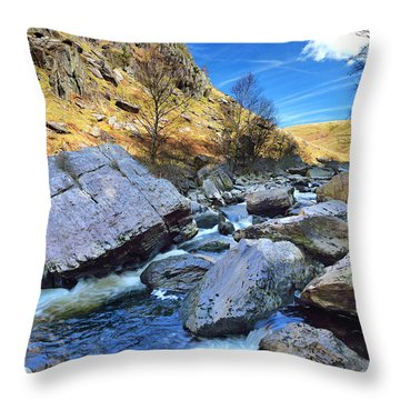 Rhandirmwyn 1 Throw Pillow