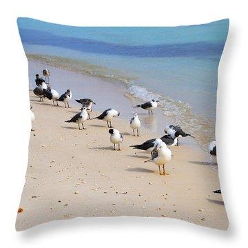 Rhapsody In Seabird Throw Pillow