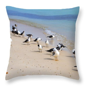 Rhapsody In Seabird Throw Pillow