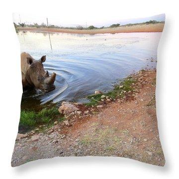 Rhino Cheetah Confrontation Throw Pillow