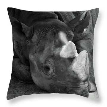 Rhino Nap Throw Pillow