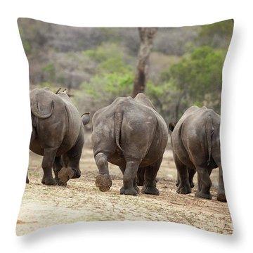 Rhino Trio Throw Pillow