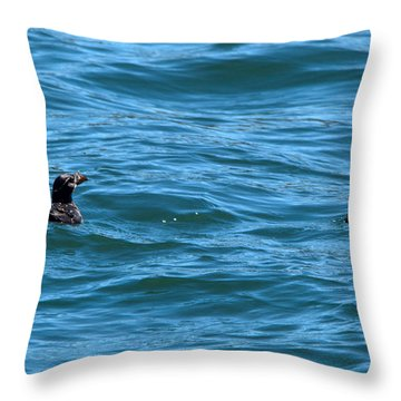 Rhinoceros Auklet Throw Pillow