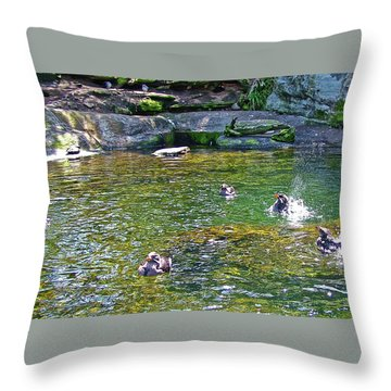 Rhinoceros Auklets In Oregon Coast Aquarium In Newport, Oregon Throw Pillow