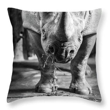 Rhinoceros Throw Pillow