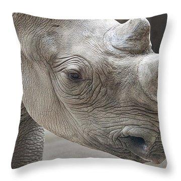 Zoo Animal Throw Pillows