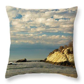 Rhode Island Beach In Winter Throw Pillow by Nancy De Flon