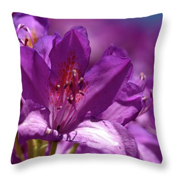 Rhododendron  Throw Pillow by Baggieoldboy