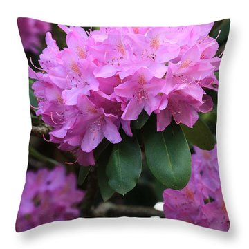 Rhododendron Beauty Throw Pillow