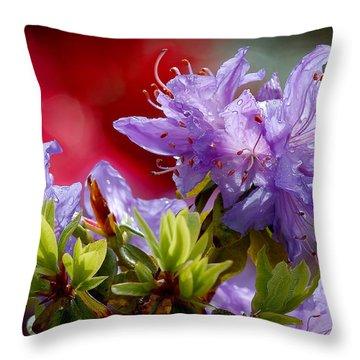 Rhododendron Bluebird Throw Pillow
