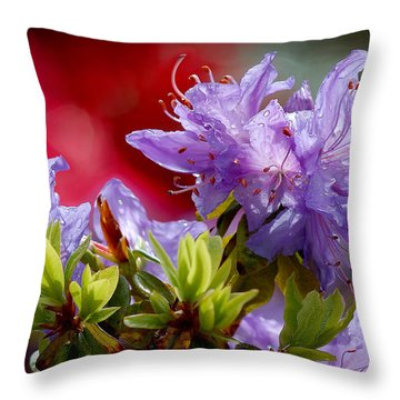 Rhododendron Bluebird Throw Pillow