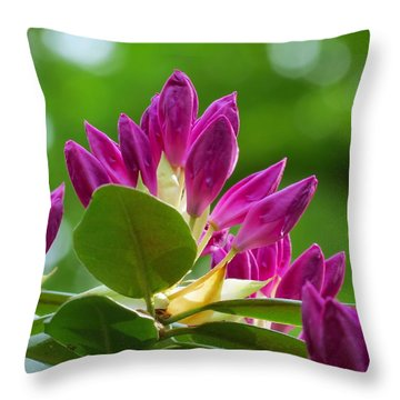 Rhododendron Buds Throw Pillow by MTBobbins Photography