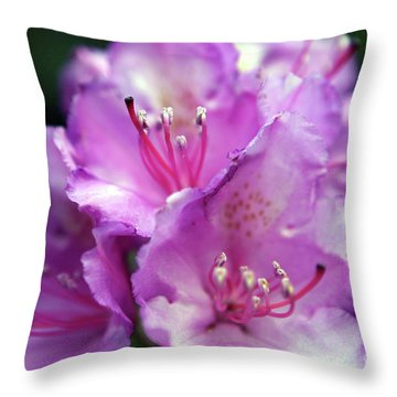 Rhododendron Festival Throw Pillow