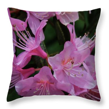 Rhododendron In The Pink Throw Pillow by Laddie Halupa